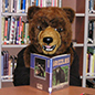 Grizzly Bear mascot reading a book