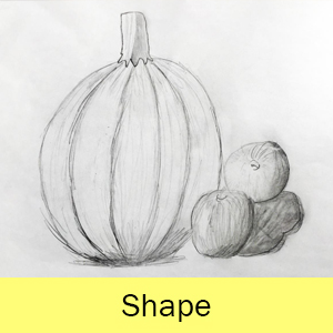 Drawings of a pumpkin and other fruits and vegetables