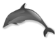 Smith Elementary logo - dolphin